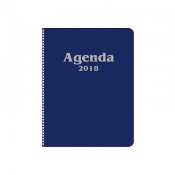 agenda directeur
