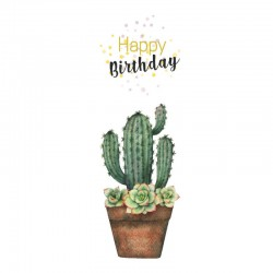 Succulent Birthday Cards, Customizable - 5'' x 7 '' - English
