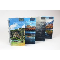 Name on cover, BILINGUAL, 2021 Desk Agenda, 6.5''x9 '', Landscape series