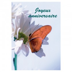 50 cartes d'anniversaire sans texte - Papillon - Français