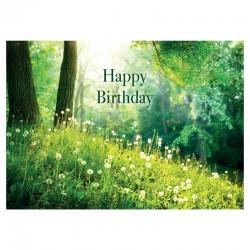 20 cartes d'anniversaire sans texte - Field - Anglais