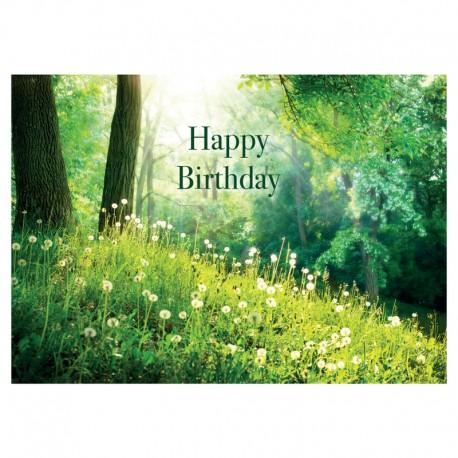 Carte anniversaire - Paquet de 20 - Sans texte - 5'' x 7'' - Anglais